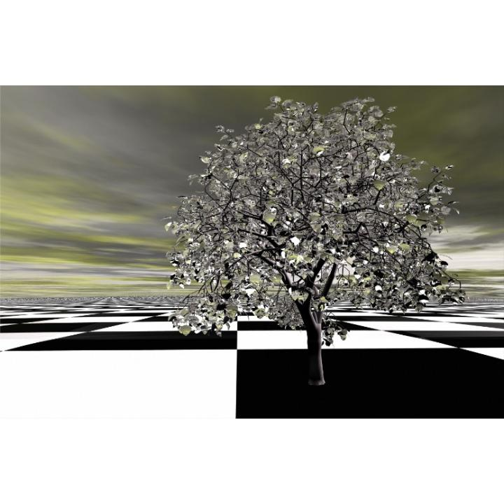 Obraz, s motívom, 20x20 TYP CH, F004384F