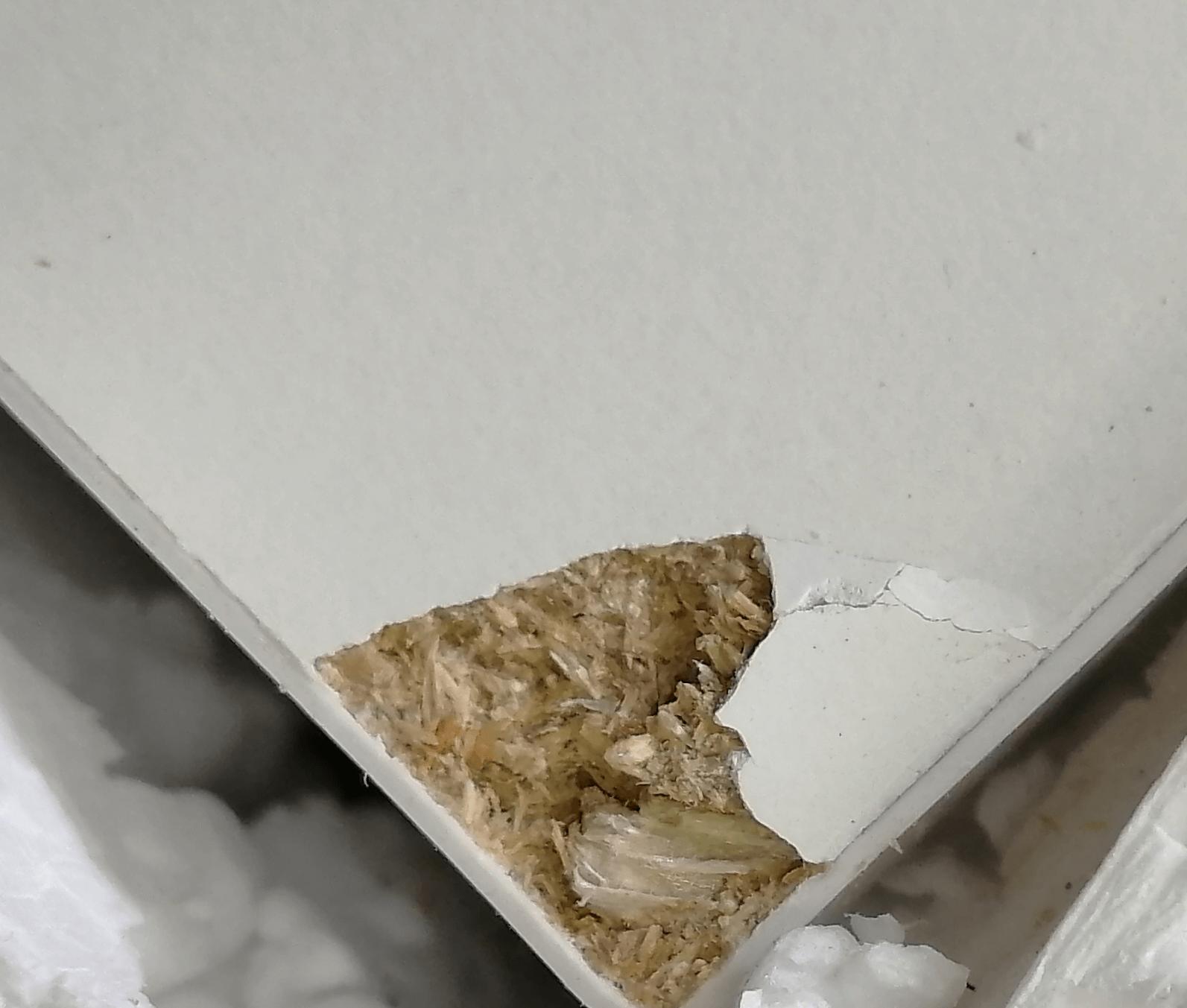 Konferenčný stolík, dub sonoma/biela, OSLO 75384, poškodený tovar