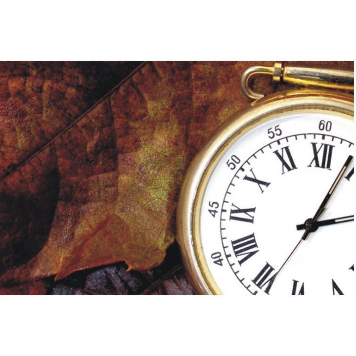 Obraz, s motívom, 20x20 TYP CH, F001236F